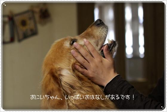 2010,10,9おかえり3