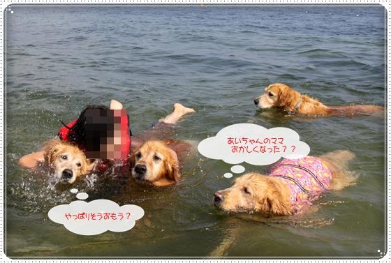 2010,10,15琵琶湖5