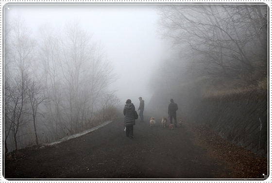2010,11,20旅行11