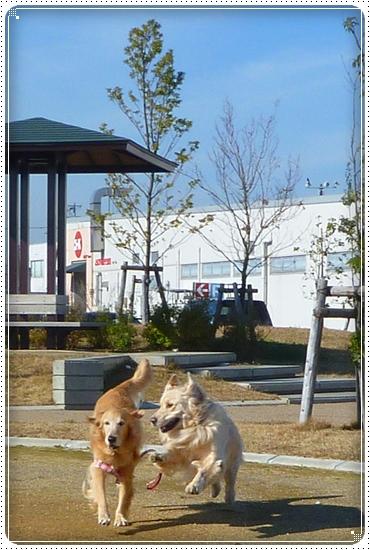 2010,12,2お散歩2