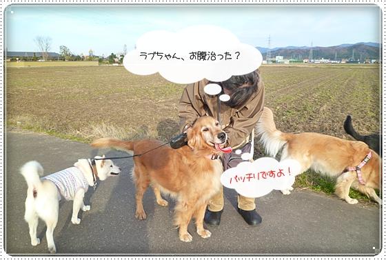 2010,12,6お散歩6