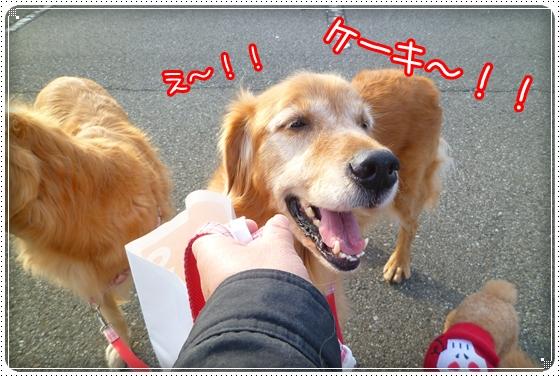 2010,12,6お散歩4