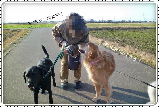 2010,12,14お散歩6