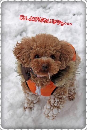 2010,12,27雪遊び5