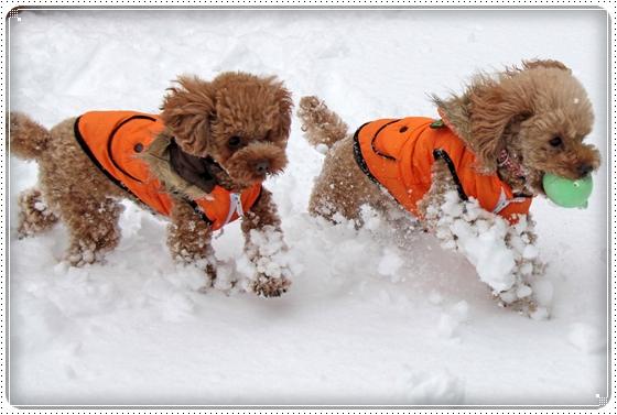 2010,12,27雪遊び11