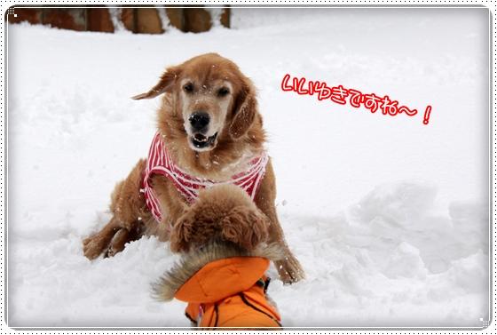 2010,12,27雪遊び12