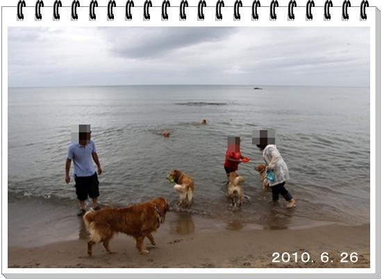 2010,12,30一年24
