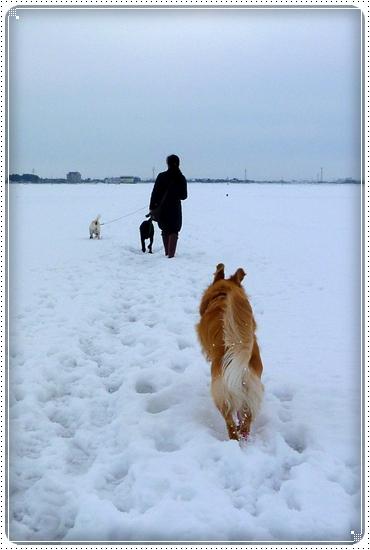 2011,2,9お散歩2