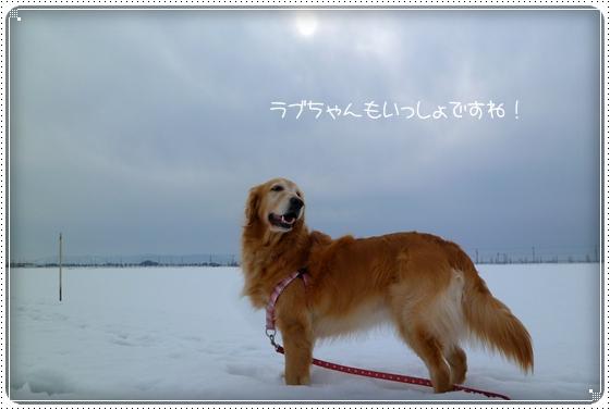 2011,2,9お散歩10