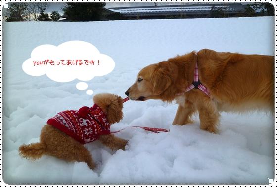 2011,2,10お散歩6