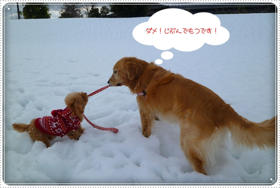 2011,2,10お散歩5