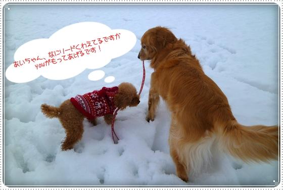 2011,2,10お散歩4