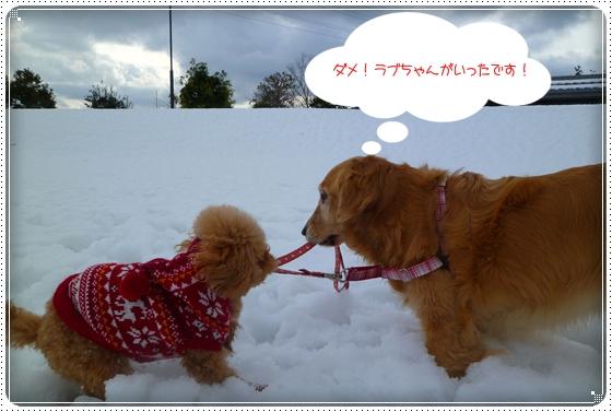 2011,2,10お散歩7