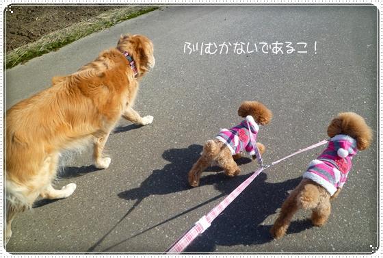 2011,2,19お散歩5