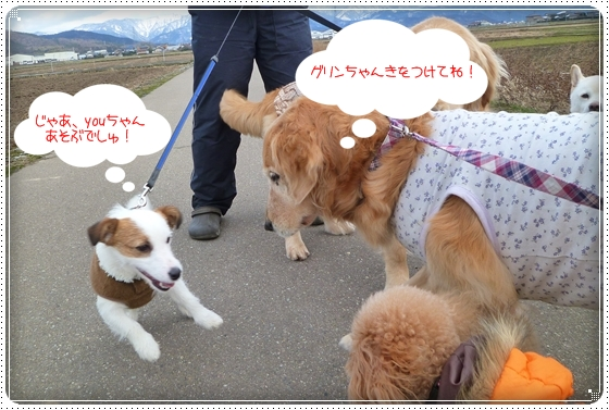 2011,3,3お散歩6