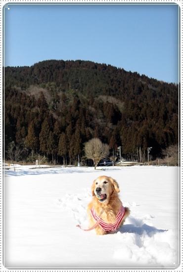 2011,3,5雪遊び5
