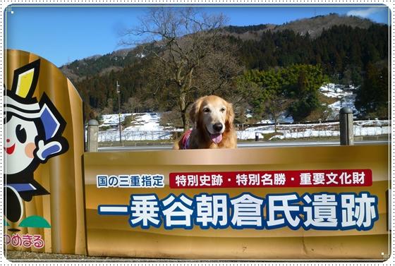 2011,3,5雪遊び4