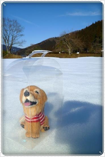 2011,3,5雪遊び13