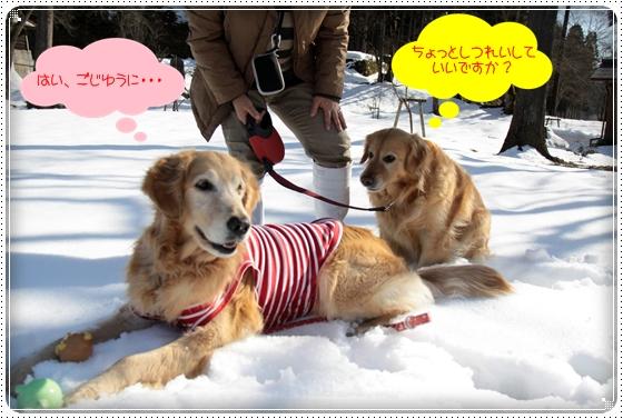2011,3,6雪遊び5