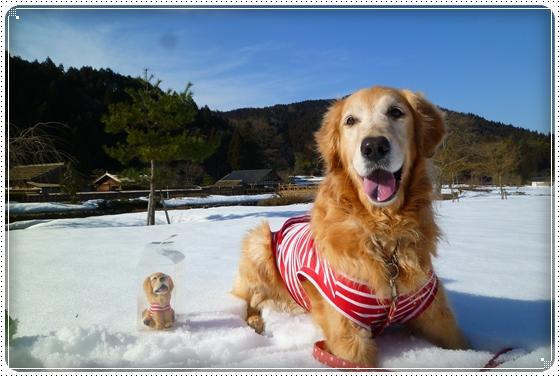 2011,3,6雪遊び12
