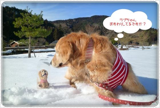2011,3,6雪遊び10