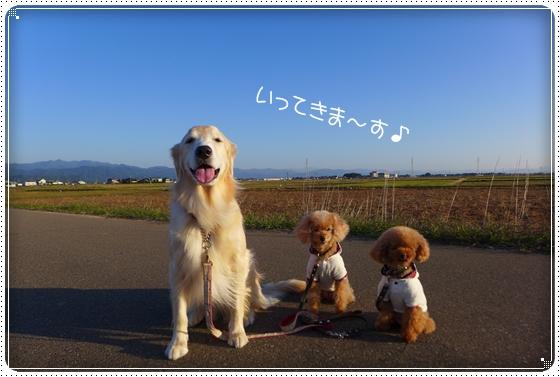 2014,10,18お散歩1