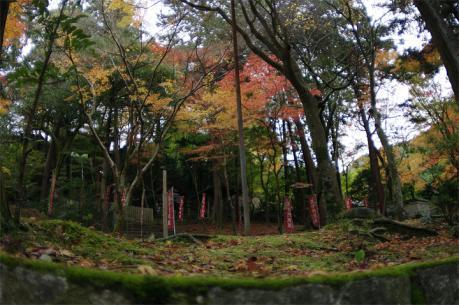 bisihiyamon3.jpg