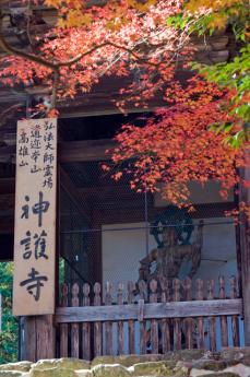 jingoji_1.jpg
