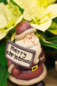 merry_santa.jpg