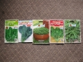 H25.11.11ハーブ・冬野菜5種種袋@IMG_2862