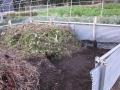 H25.11.22堆肥置き場の様子@IMG_0117