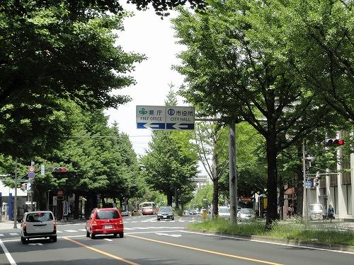 1106fujiya001.jpg