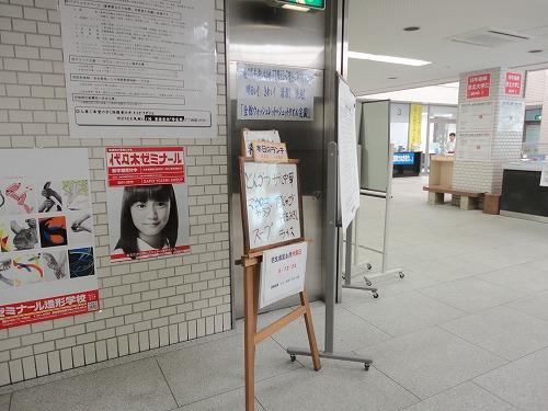 1106yozemihiyasi002.jpg
