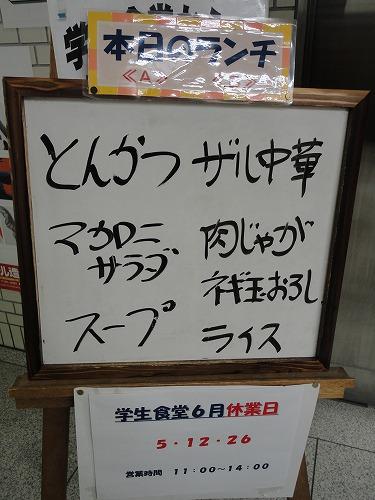 1106yozemihiyasi003.jpg