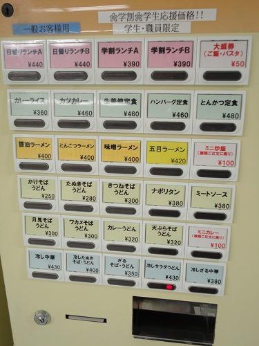 1106yozemihiyasi005.jpg