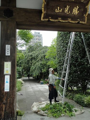 1108tokusenji004.jpg