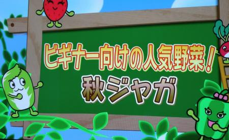 035_convert_20120903105059.jpg
