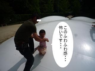 maika2206233.jpg