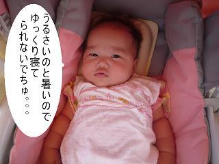 maika22080415.jpg