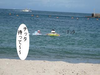 maika2208046.jpg