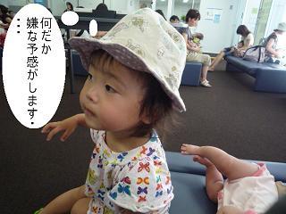 maika2208181.jpg