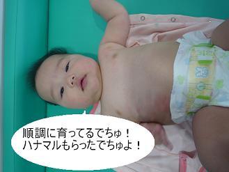 maika2208184.jpg