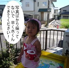 maika2208281.jpg