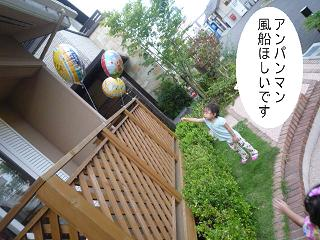 maika22090510.jpg