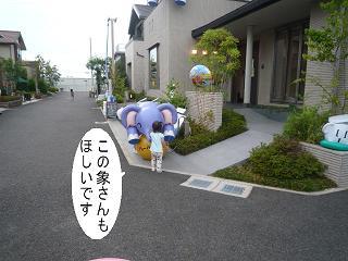 maika22090511.jpg