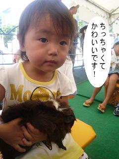 maika22091210.jpg