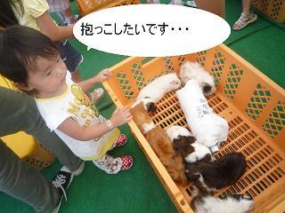 maika2209126.jpg