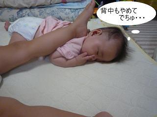 maika2209172.jpg