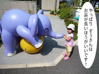 maika22091810.jpg
