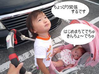 maika2209211.jpg